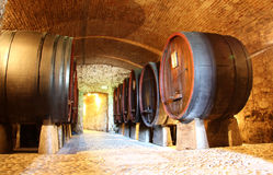Wooden wine barrels in a cellar Stock Photos