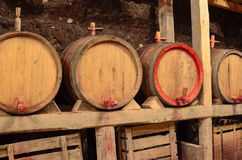 Wooden wine barrels in an underground cellar Royalty Free Stock Image
