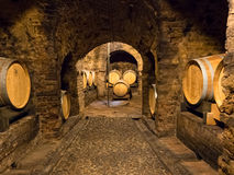 Wooden wine barrels in a wine cellar in Piedmont Royalty Free Stock Photo