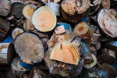 Wooden. Wood is  cut into flak Royalty Free Stock Image
