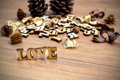 Wooden word Royalty Free Stock Images