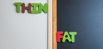 Wooden word THIN and FAT on black board and white board. 1 Royalty Free Stock Photo