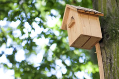 Wooden yellow bird house or nesting box on a tree in summer park Royalty Free Stock Image