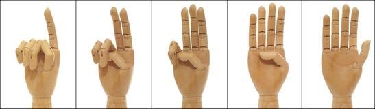 woodenhand kolażu obliczenie obraz stock
