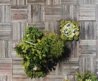 Woodern Decking en Bloemen Stock Foto's