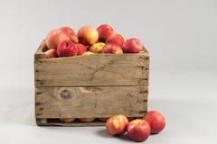 Woodern-Kiste voll Äpfel Lizenzfreies Stockfoto