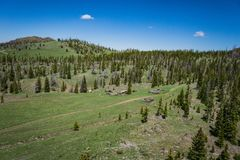 Woodern Settlement Remains in Wyoming Forest Stock Images