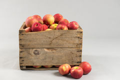 Woodern spjällåda mycket av äpplen Royaltyfri Foto