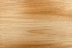 Woodgrain μακρο υπόβαθρο στοκ εικόνες