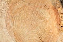 Woodgrain Stock Photo