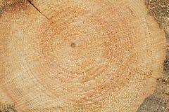 Woodgrain Stock Photography