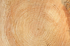 Woodgrain Royalty Free Stock Photo