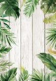 Woodgrain maserte Sommerhintergrund mit natürlicher Blattgrenze lizenzfreies stockfoto