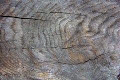 Woodgrain resistido da textura fotos de stock