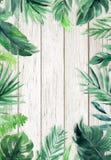 Woodgrain textured lata tło z naturalnymi liśćmi graniczy obraz stock