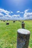 Woodhenge 库存图片