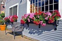 Woodholes, Massachusetts Royalty Free Stock Photos