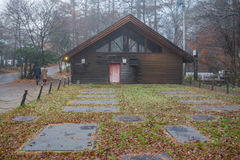 Woodhouse με το δέντρο και την ομίχλη Στοκ φωτογραφία με δικαίωμα ελεύθερης χρήσης