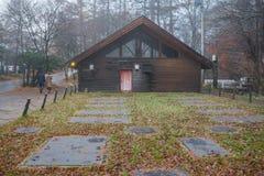 Woodhouse com árvore e névoa Foto de Stock Royalty Free