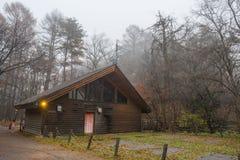 Woodhouse com árvore e névoa Fotos de Stock Royalty Free