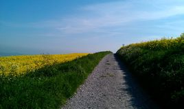 Woodingdean to Lewes trail. Drove Avenue from Woodingdean to Lewes Royalty Free Stock Photo