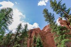 Woodl rouge de Colorado Springs de réserve forestière de brochet de terrain de camping de roche images stock