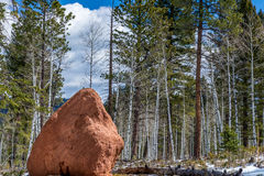 Woodl rouge de Colorado Springs de réserve forestière de brochet de terrain de camping de roche image libre de droits