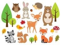 Cute Woodland Forest Animal Vector Illustration Set vector illustration