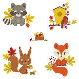 Woodland animals in autumn time. Stock Photo