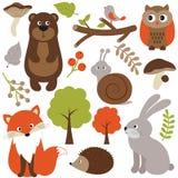 Woodland animals Stock Photo