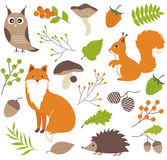 Woodland animals Stock Images