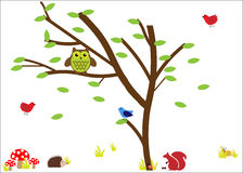 Woodland Animals / Nature Icons Royalty Free Stock Images