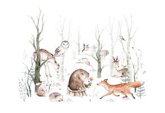 Woodland animals set. Owl, hedgehog, fox and butterfly, Bunny rabbit set of forest squirrel and chipmunk, bear and bird