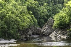 Woodland Area Of Linn Of Tummel Royalty Free Stock Images