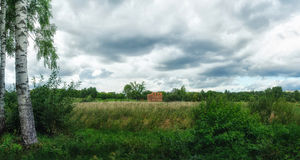 Woodland bog. Clouds sky. Meadow royalty free stock photo