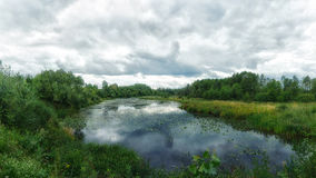 Woodland bog. Forest blue river. Clouds sky. Summertime royalty free stock photography