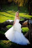 Woodland bride Stock Images