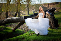 Woodland bride Royalty Free Stock Photo