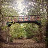 Woodland Bridge. Bridge on a woodland walk royalty free stock photography
