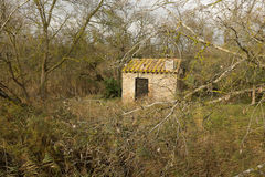 Woodland building. Royalty Free Stock Photography