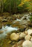 Woodland Cascade royalty free stock photography