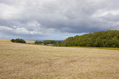 Woodland copse and farm. A woodland copse and farm in undulating countryside with a harvested oilseed rape field and a strip of wildflowers under a summer stormy Stock Photography