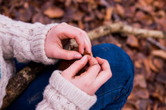 Woodland Crafting. Child Collects leaves and sticks for woodland crafts Royalty Free Stock Image