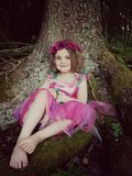 Woodland fairy. Fairy woodland magical storybook girl dressup child Royalty Free Stock Photos