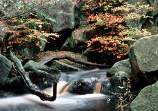 Woodland Falls. Blurred fast flowing water in a woodland setting with fall colours Royalty Free Stock Images