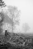 Woodland in fog, old wooden gate Royalty Free Stock Photography