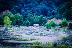 Woodland And Forest Of Turkish Countryside Stock Photography