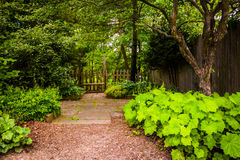 Woodland garden at Cylburn Arboretum, Baltimore, Maryland. Stock Photography