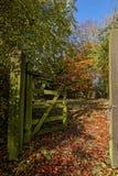 Woodland Gateway Royalty Free Stock Images
