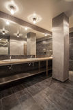 Woodland hotel - bathroom interior Stock Images